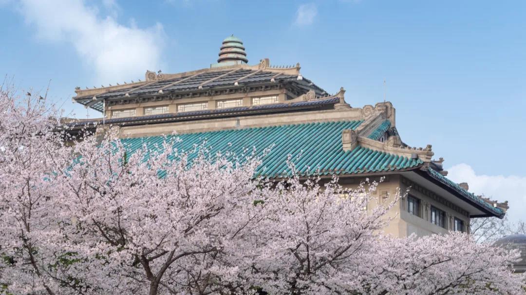 武汉大学2021年强基计划重磅发布!
